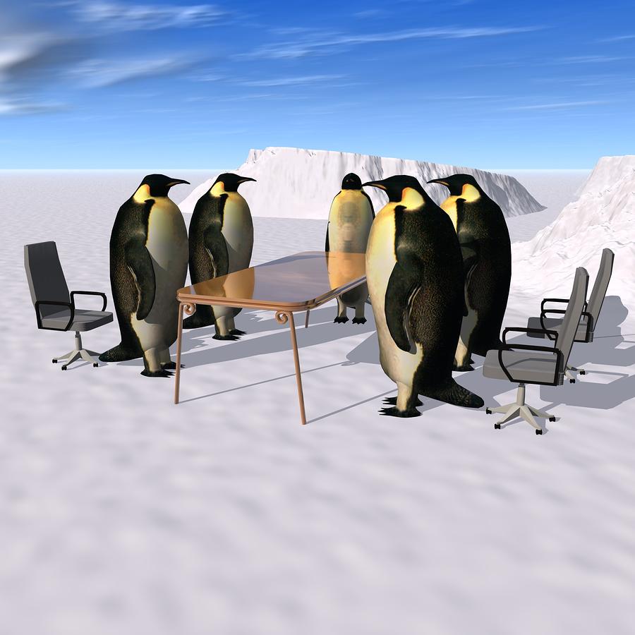 Penguins Meeting_1619038